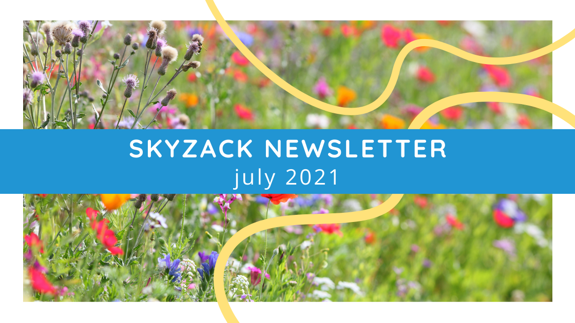 Skyzack blog feature image july newsletter